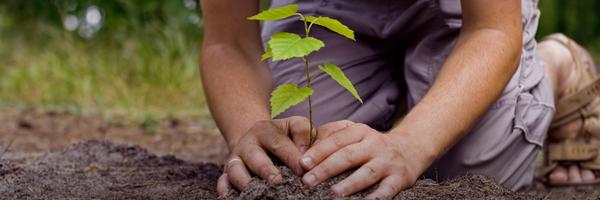 ekoloske_aktivnosti