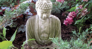 EKOLOGIJA_Buddha-u-cvijecu