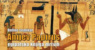 anijev-papirus-seminar-web-event-2021-02